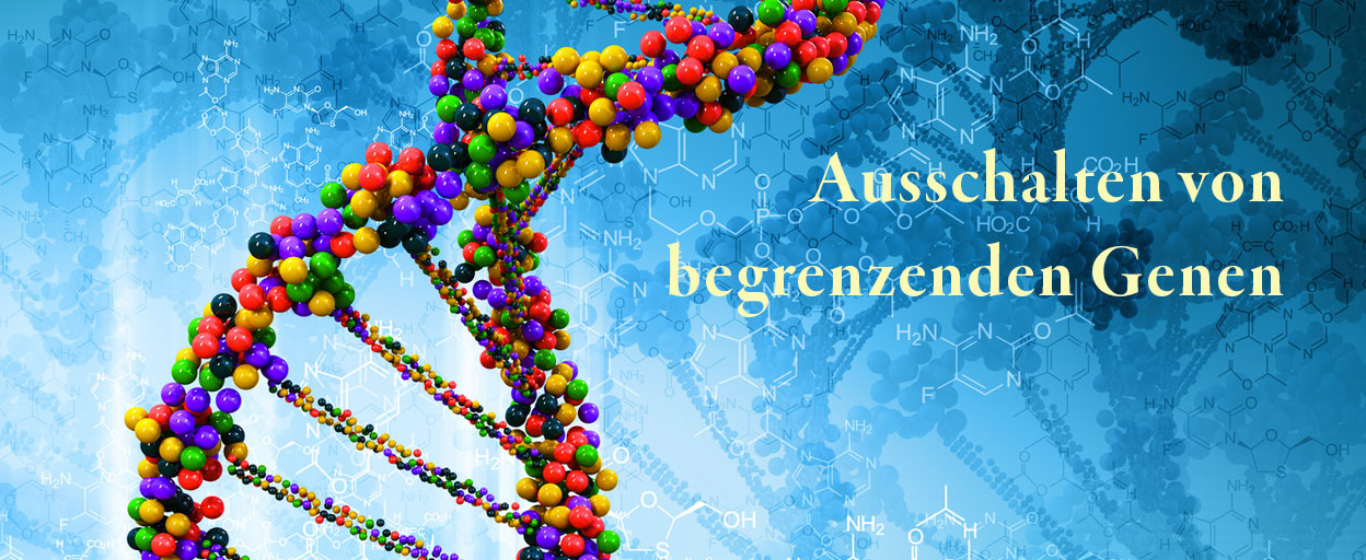 Slider - Gabriele A. Petrig - Ausschalten von begrenzenden Genen