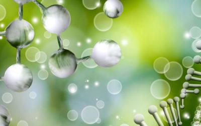 Genetic-Healing®-Ausbildungs-Schnuppertag